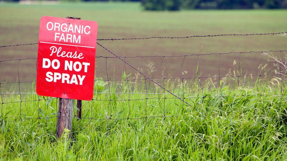 Derfor er økologisk landbruk redningen
