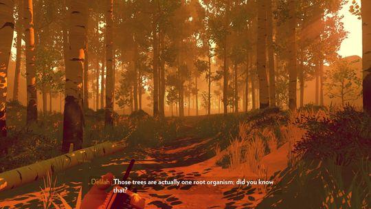 Firewatch burde vært litt mer som denne skogen, sammenhengende.