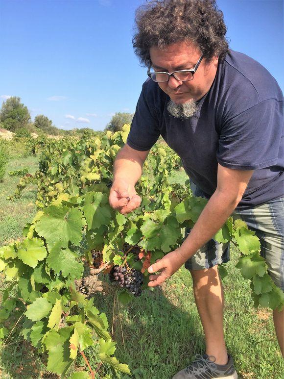 Miquelàngel Cerda i vinmarken.