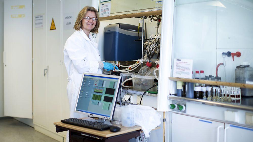 Wenche Hennie Bergland har satt verdensrekord i innmating og omsetningshastighet for biogassproduksjon gjennom sin forskning - her fra  laboratoriet. (Foto: Tine Polle, Høgskolen i Sørøst-Norge)