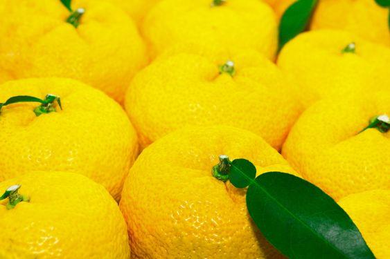 Yuzu ser ut som en mellomting mellom mandarin og sitron.