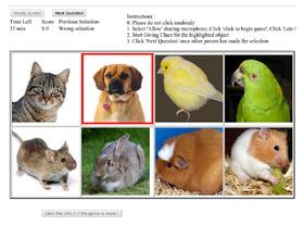 Løsningen ble testet ut i form av et spill hvor brukerne beskrev ulike bilder.