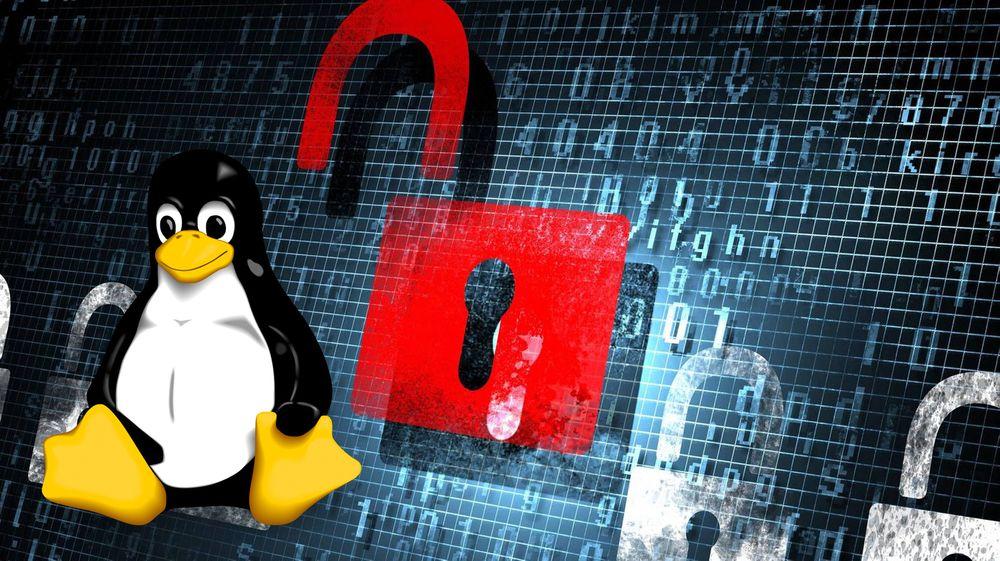 Svært mange, men ikke alle Linux-baserte systemer er berørt av sårbarheten.