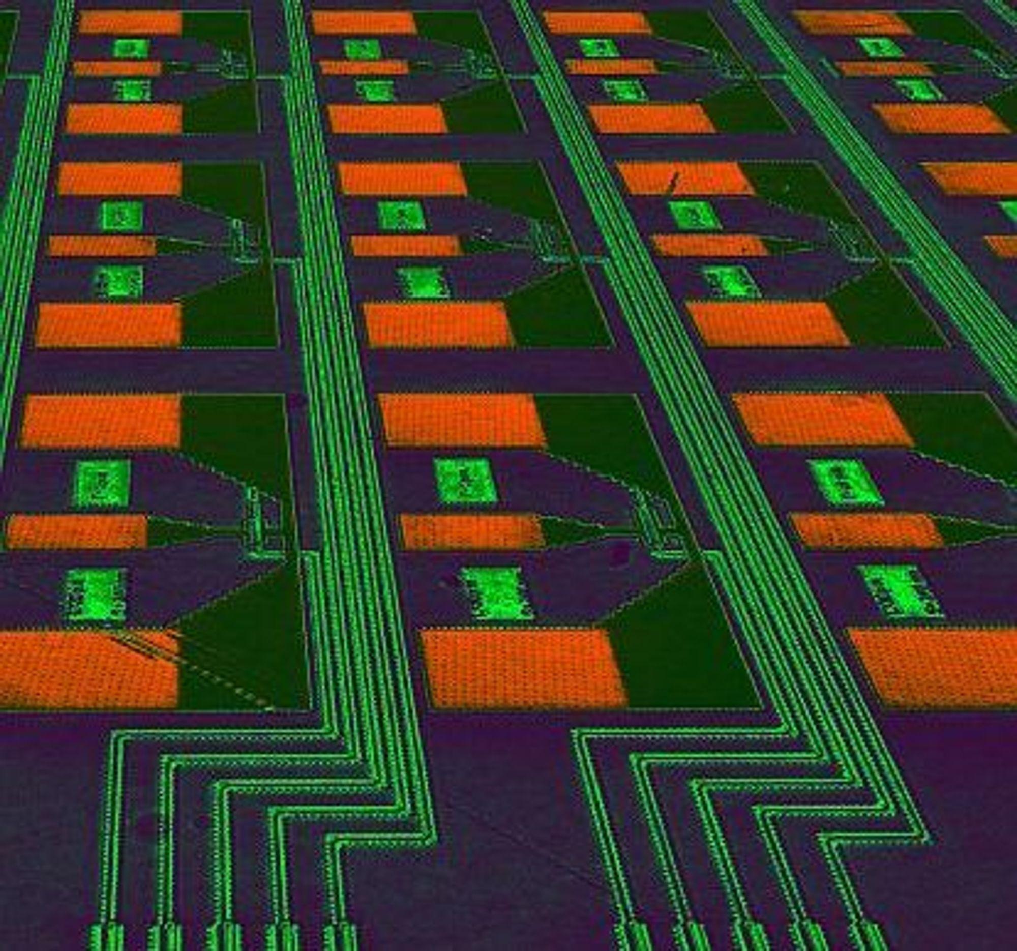 IBMs nye avalanche fotodetektorer på en silisiumbrikke. Fotografiet er tatt ved hjelp av et optisk mikroskop.