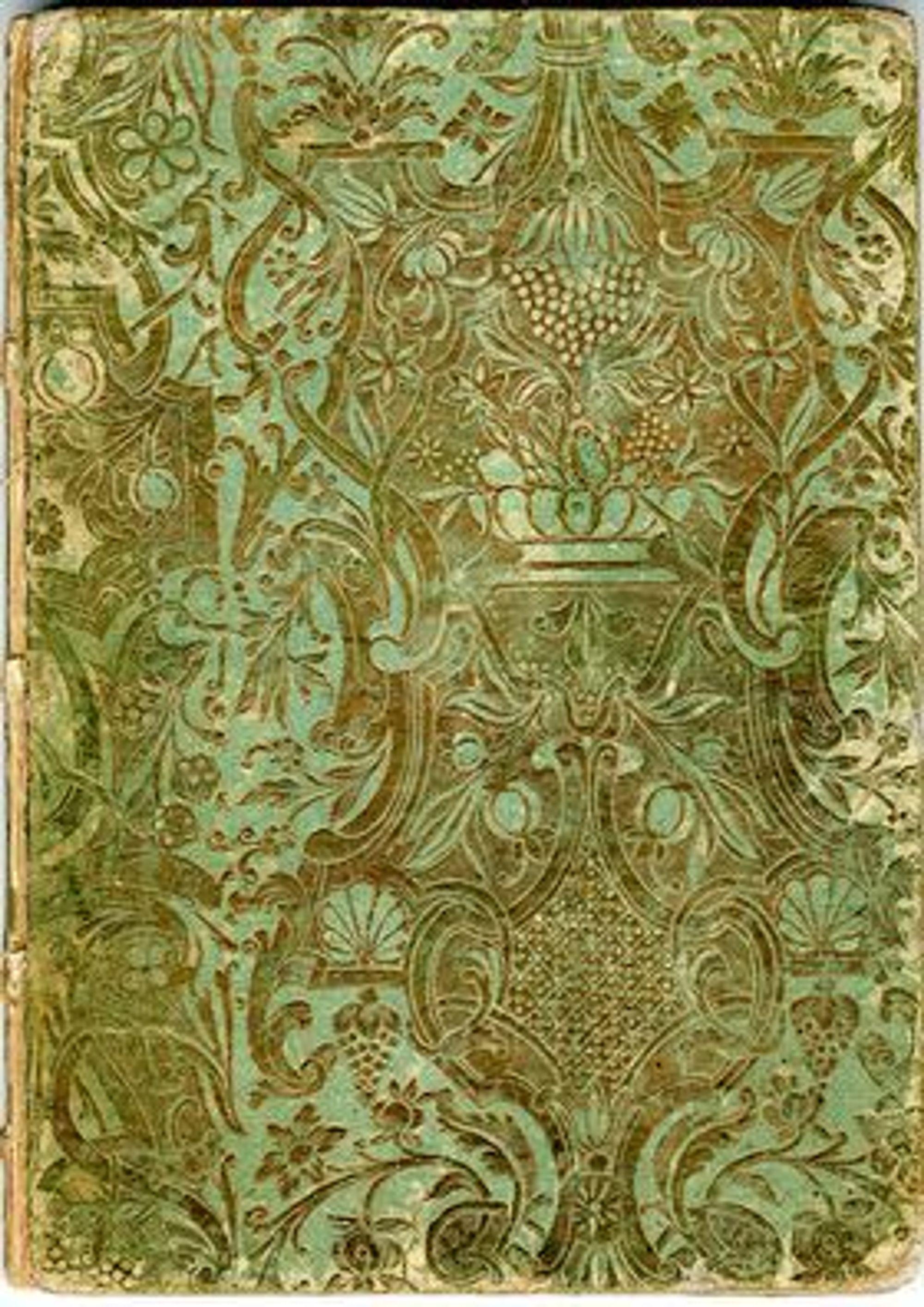 Manuskriptet er vakkert innbundet, uten tittel.