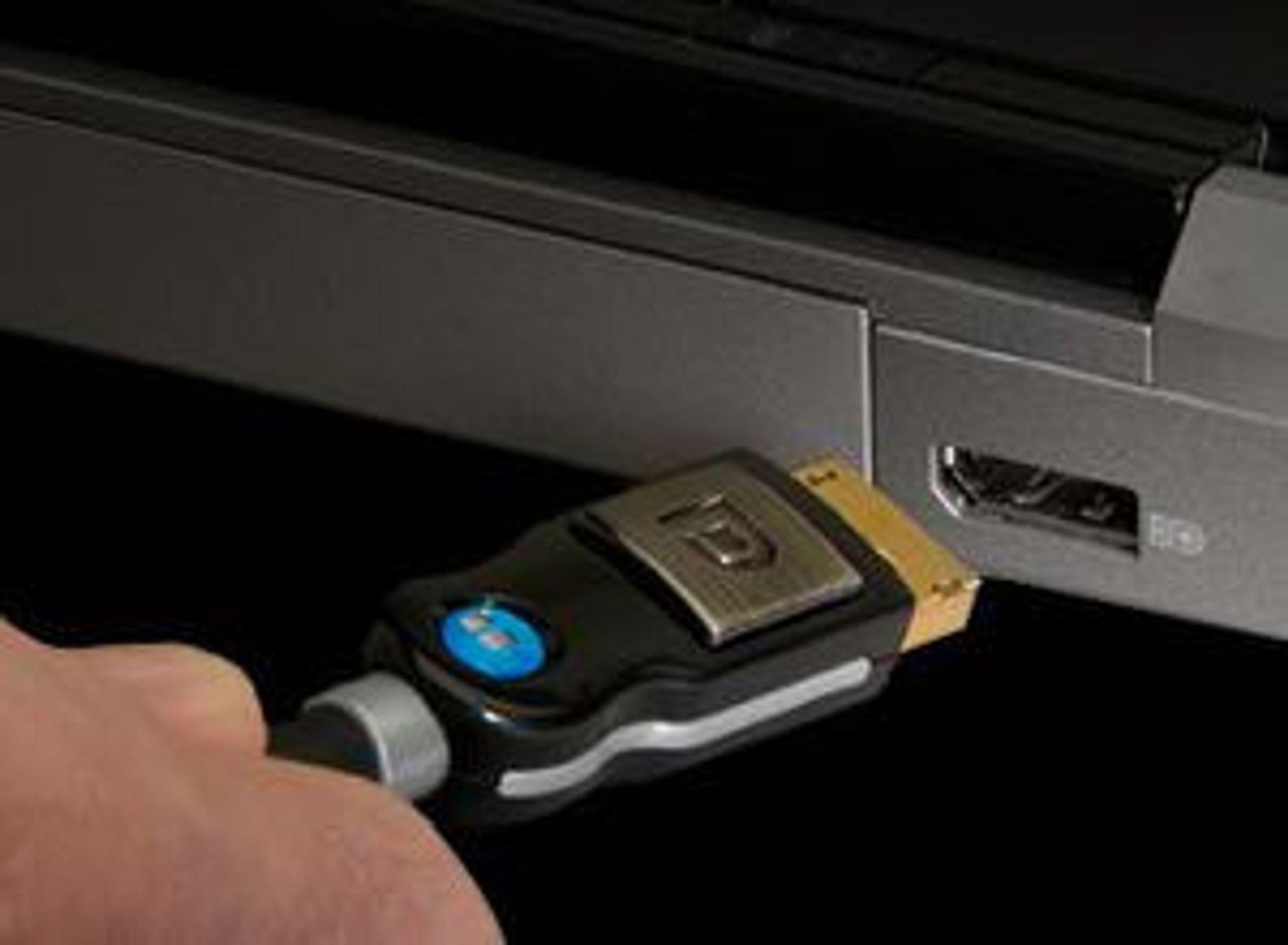 Standard DisplayPort-kontakt og -plugg.