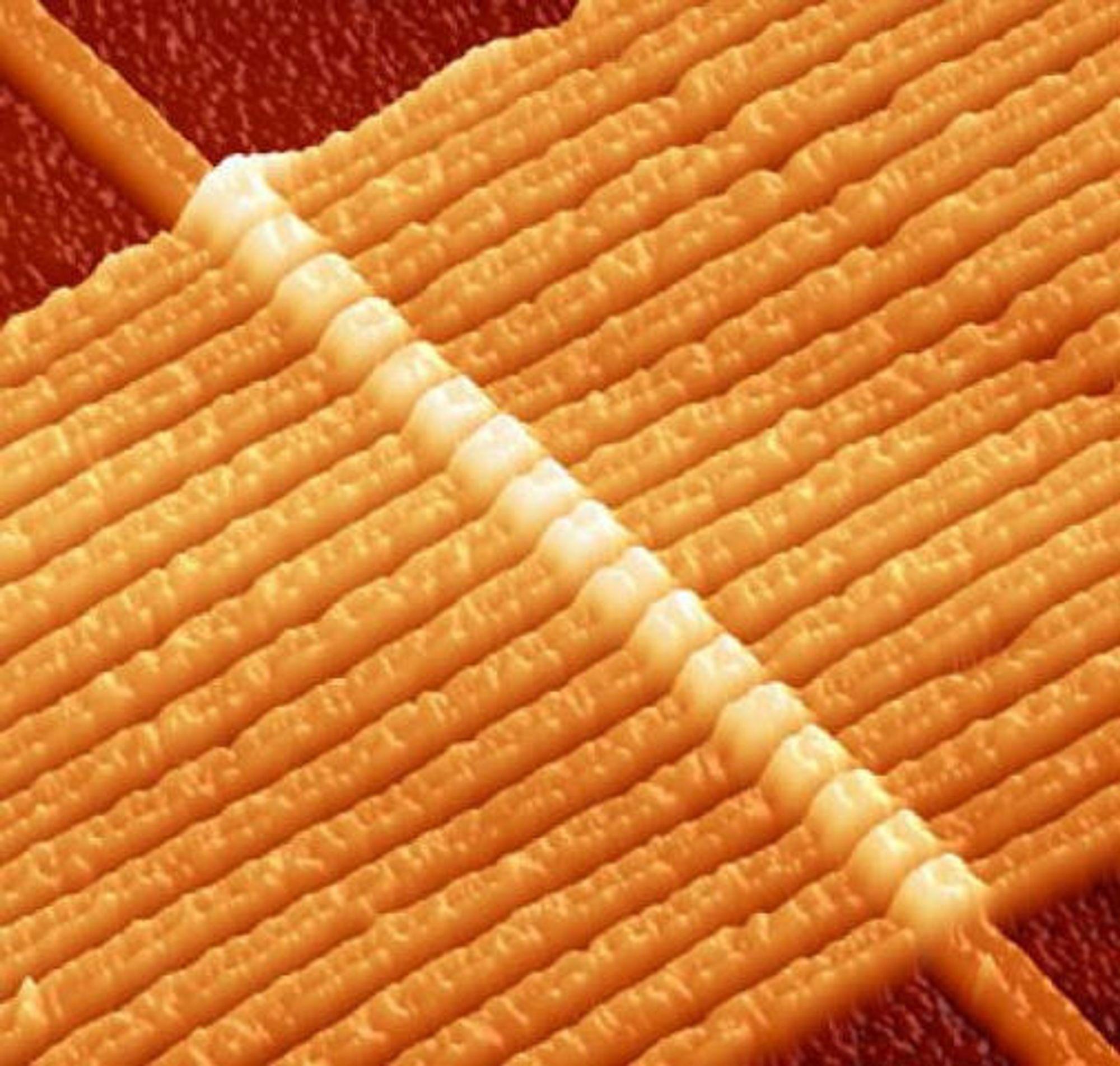 17 memristorer på rad, dannet ved å krysse 17 platina-baserte nanotråder med en annen tråd, med en tynn klatt med titandioksid i en sandwichkonstruksjon mellom hvert av kryssene. Hver tråd er 50 nanometer bred.