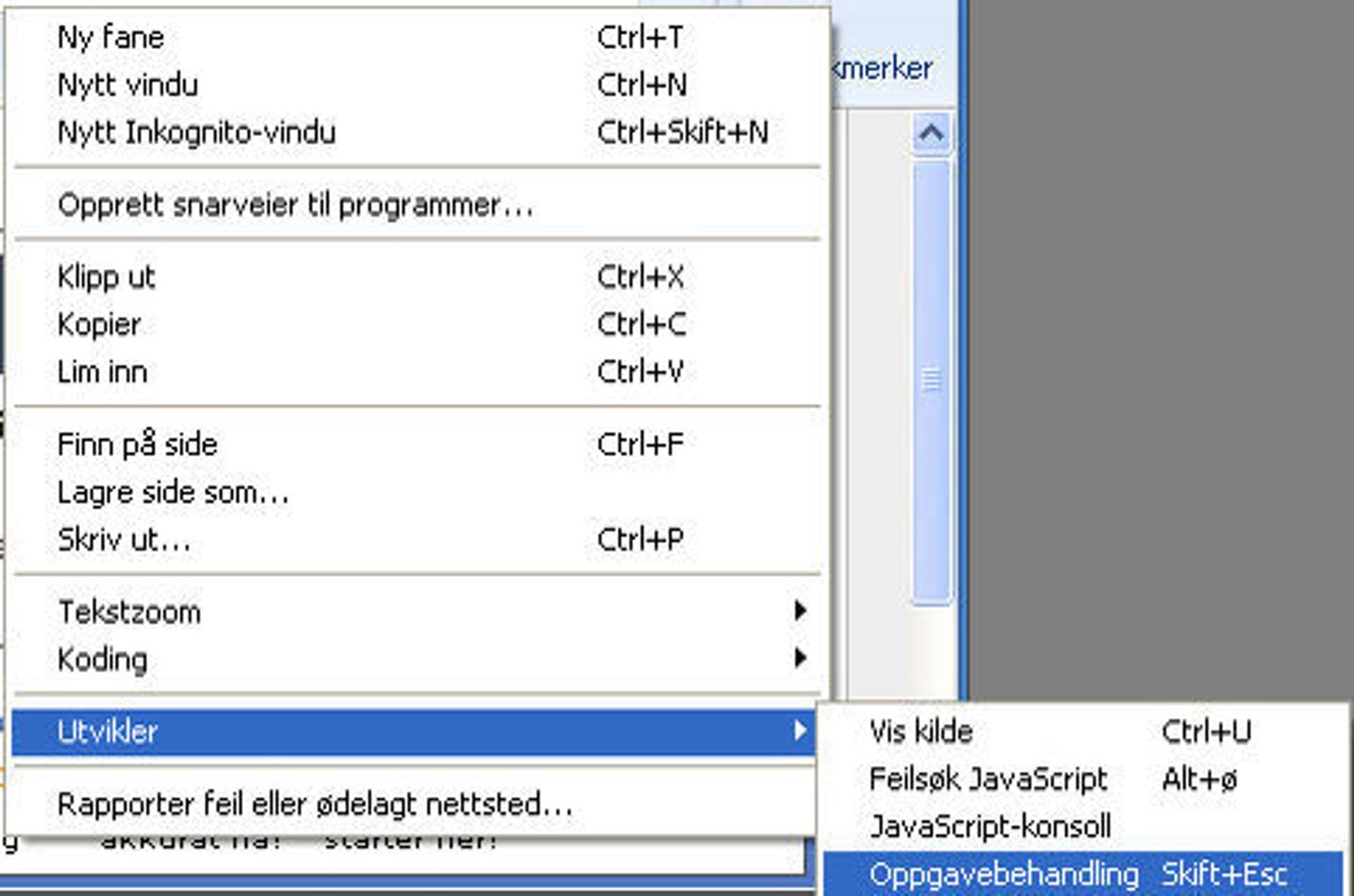 Vindusmeny i Chrome, samt Utvikler-seksjonen.