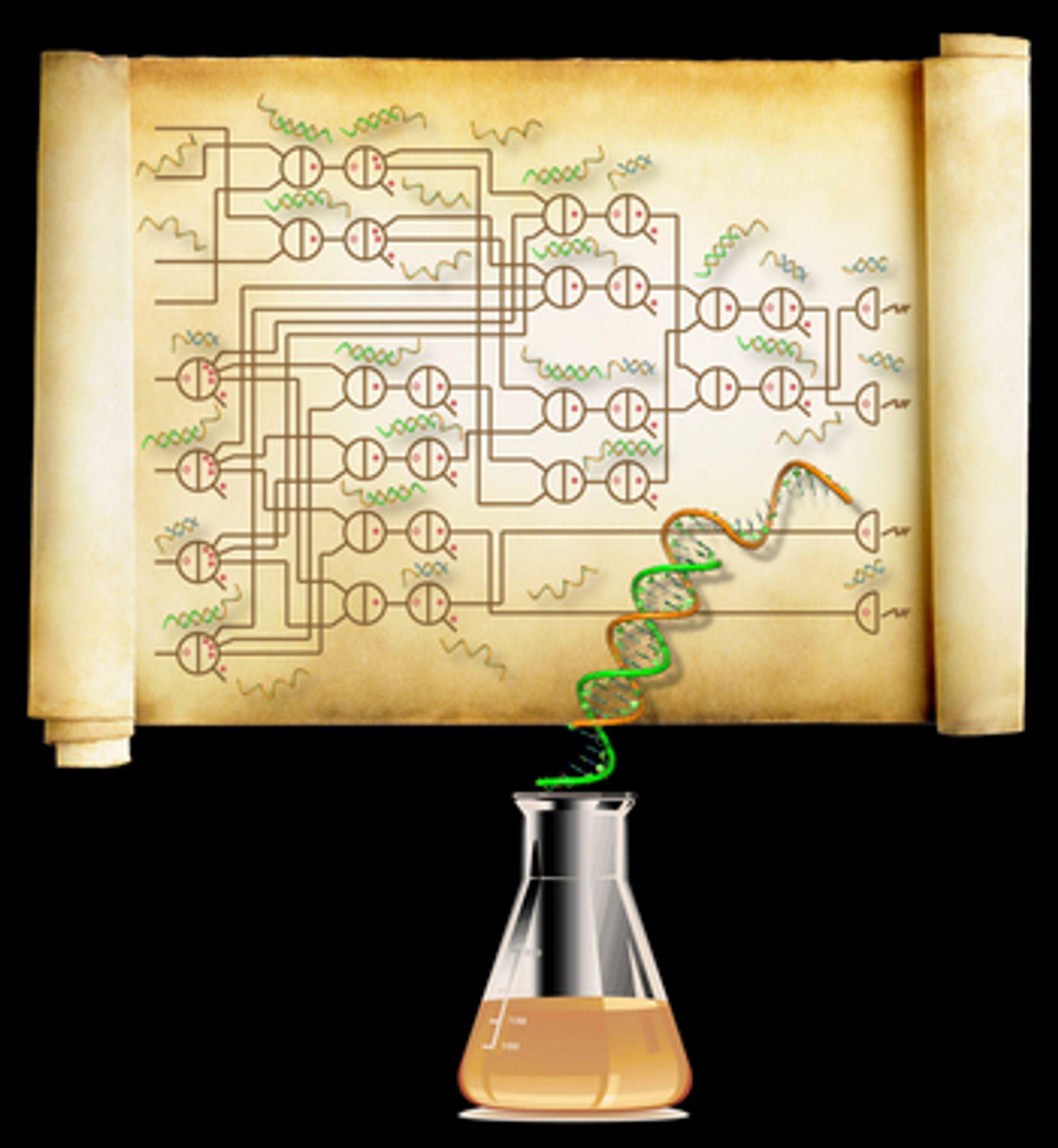 Koplingsskjema til DNA-maskin for å beregne kvadratrøtter av heltall.