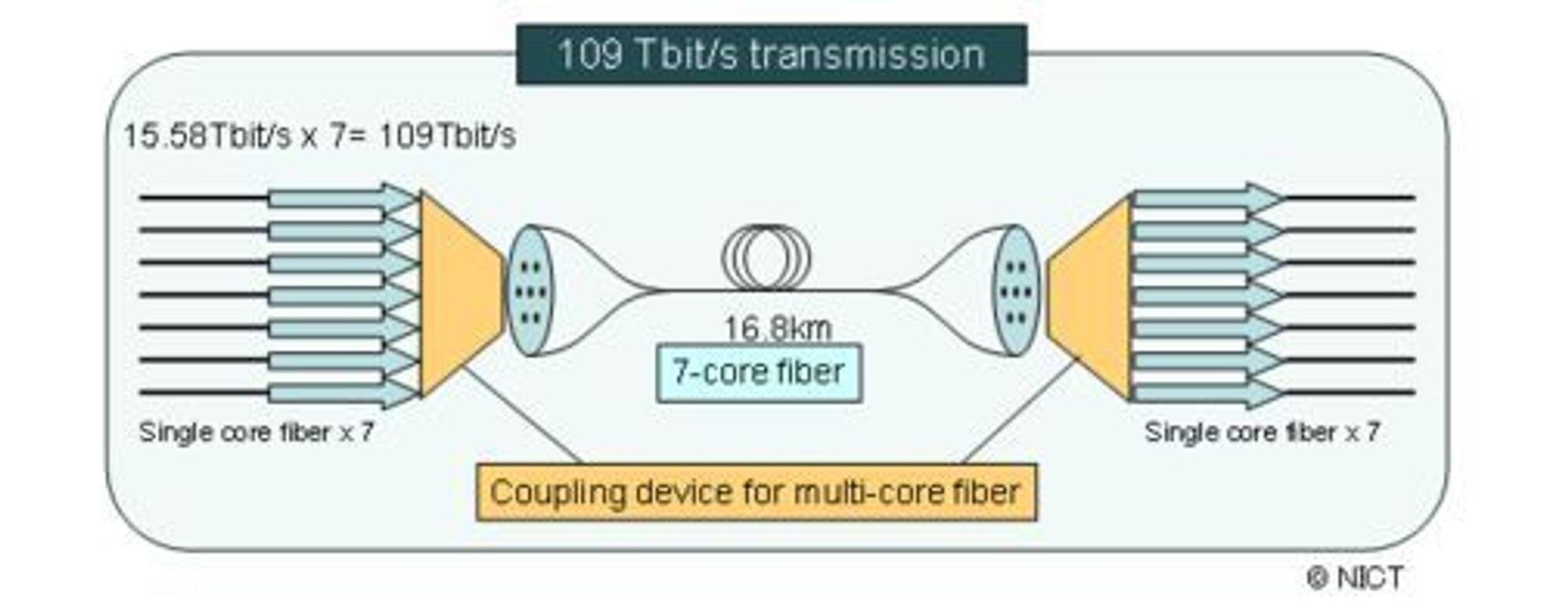 Fiberkabelen med sju kjerner er knyttet til sju vanlige fiberkabler med én kjerne i hver av endene.