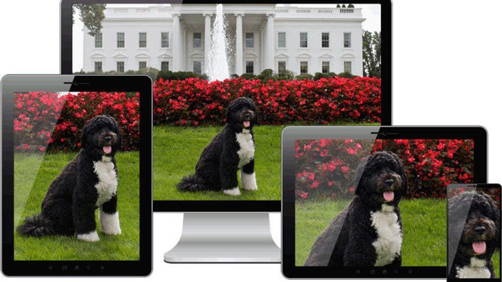 Med det nye picture-elementet som snart støttes av flere nettlesere, blir det enklere for utviklere av webapplikasjoner å velge at ulike bilder skal brukes på ulike typer enheter.