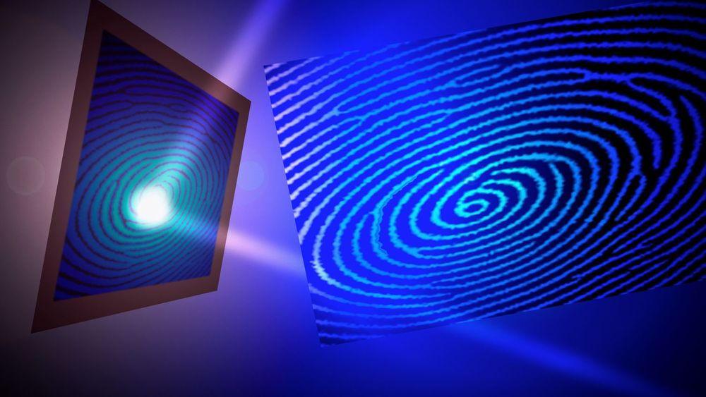 Fingeravtrykksleser spås å bli standard på kommende smartmobiler.