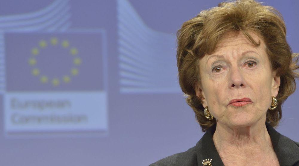 Neelie Kroes mener Europa må ta føringen for å bygge opp en global nettforvaltning som ikke lener seg på USA og som heller ikke gir økt spillerom til frihetsfiendtlige krefter.