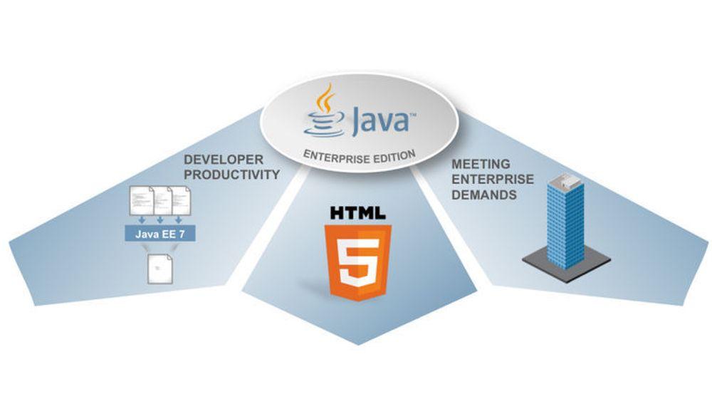 Nyhetene i Java Enterprise Edition 7 skal møte tre ulike behov, bedre støtter for HTML5-baserte webapplikasjoner, bedre utviklerproduktivitet og de økte kravene til bedriftsløsningene som bygger på plattformen.