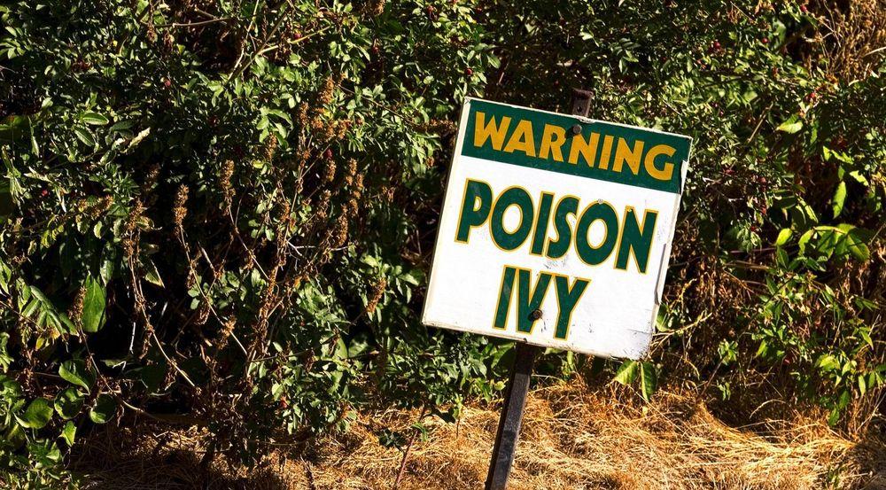 Sårbarheten i IE8 har allerede ført til at brukere har blitt infisert av bakdøren Poison Ivy, det engelske navnet på planten giftsumak. Poison Ivy er også navnet til en av Batmans kvinnelige motstandere.