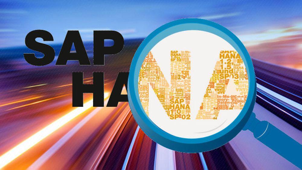 SAP lykkes i å fornye seg: Omsetningen i skyen er tredoblet, mens Hana øker med 21 prosent.