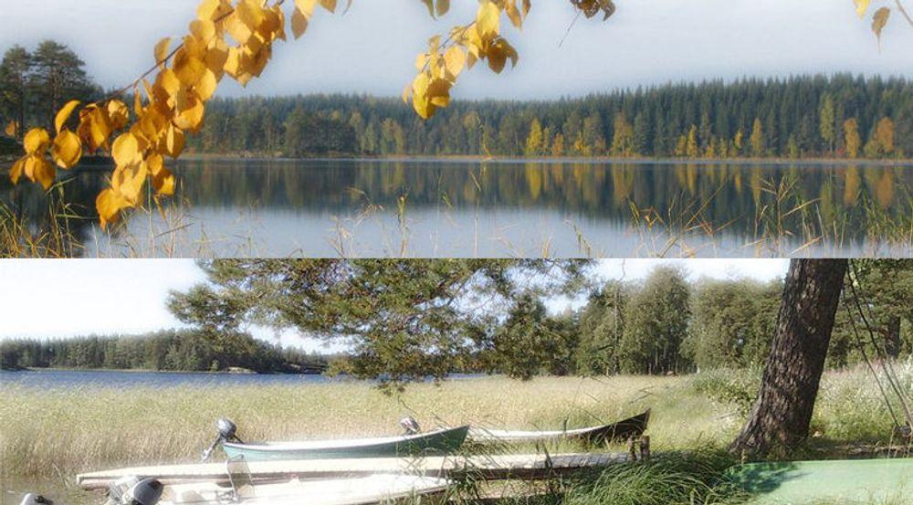 Nettsidene til Tag Systems Finland er preget av kjærlighet til finsk natur.