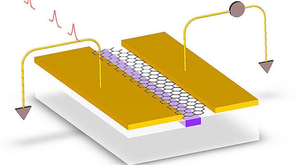 Illustrasjon som viser fotodetektoren til den amerikanske forskningsgruppen. Lys kommer inn gjennom en bølgeleder, treffer et grafénlag som omdanner lyset til elektroner. Disse kan så behandles av brikken som fotodetektoren er integrert med.