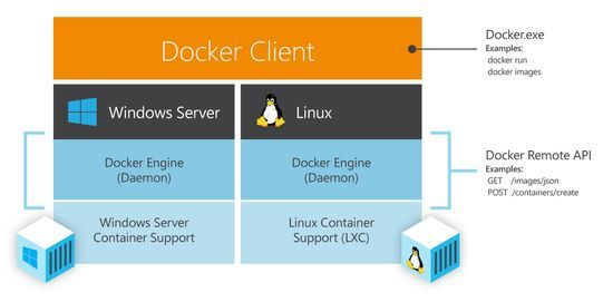 Docker-klienten vil være felles for både Linux- og Windows-baserte Docker-oppsett.