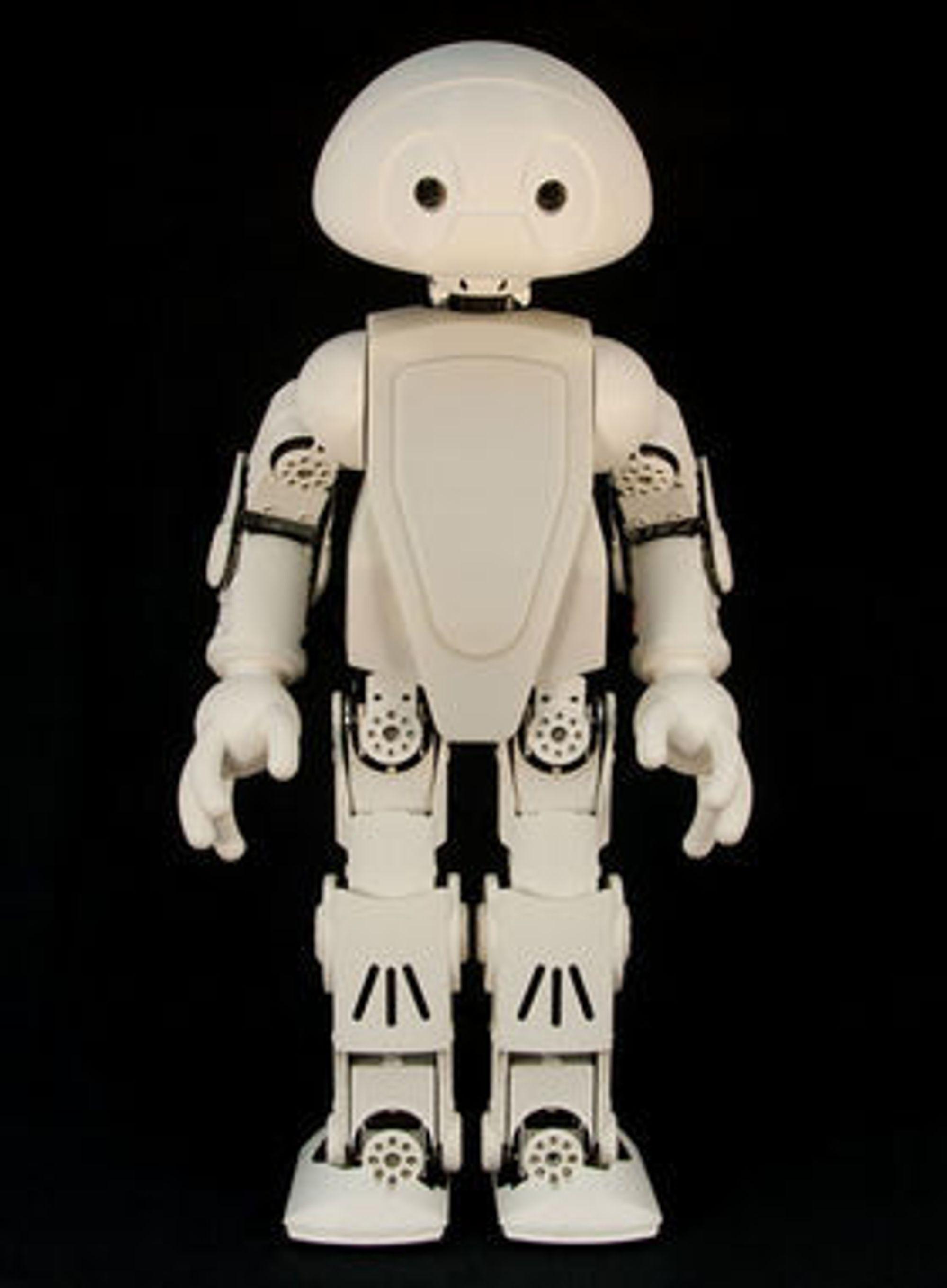 Jimmy-roboten skal kunne brukes til både nytte og moro. Nøyaktig hva kan i stor grad avgjøres av brukerne selv. Eksempler mulig funksjonalitet er å synge, oversette tale og kanskje til og med å servere eieren en kald øl.