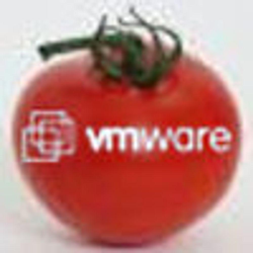 Intel fremst i køen for å kjøpe VMware-aksjer