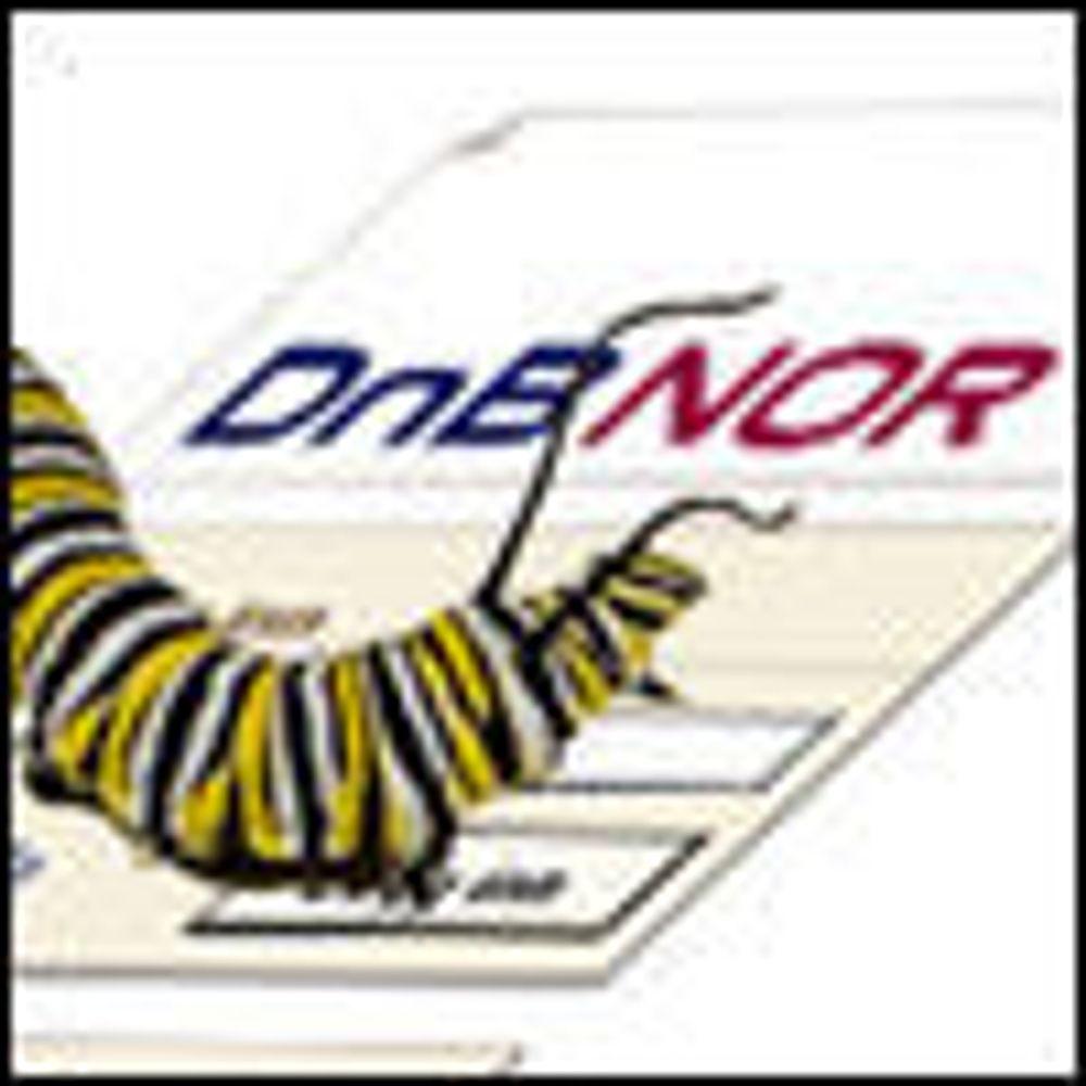 DNB Nor-viruset kostet mange millioner