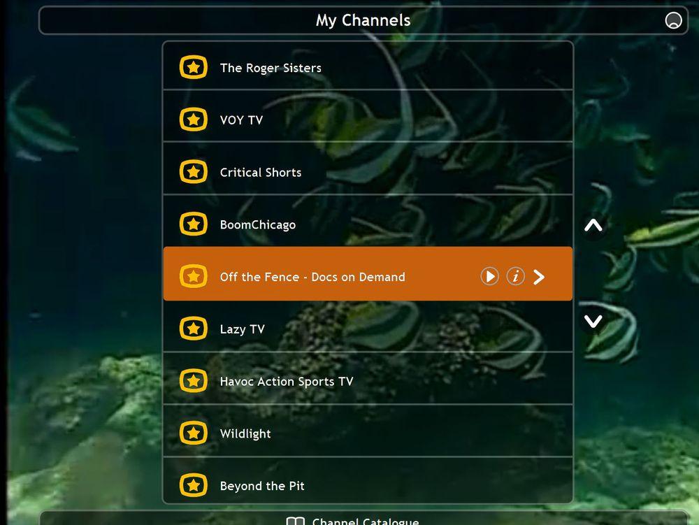 Detaljer om Skypes TV-prosjekt lekker ut