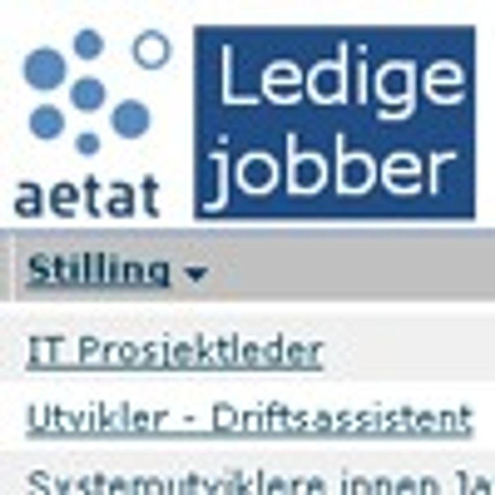Eksplosiv stillingsvekst i IT-sektoren