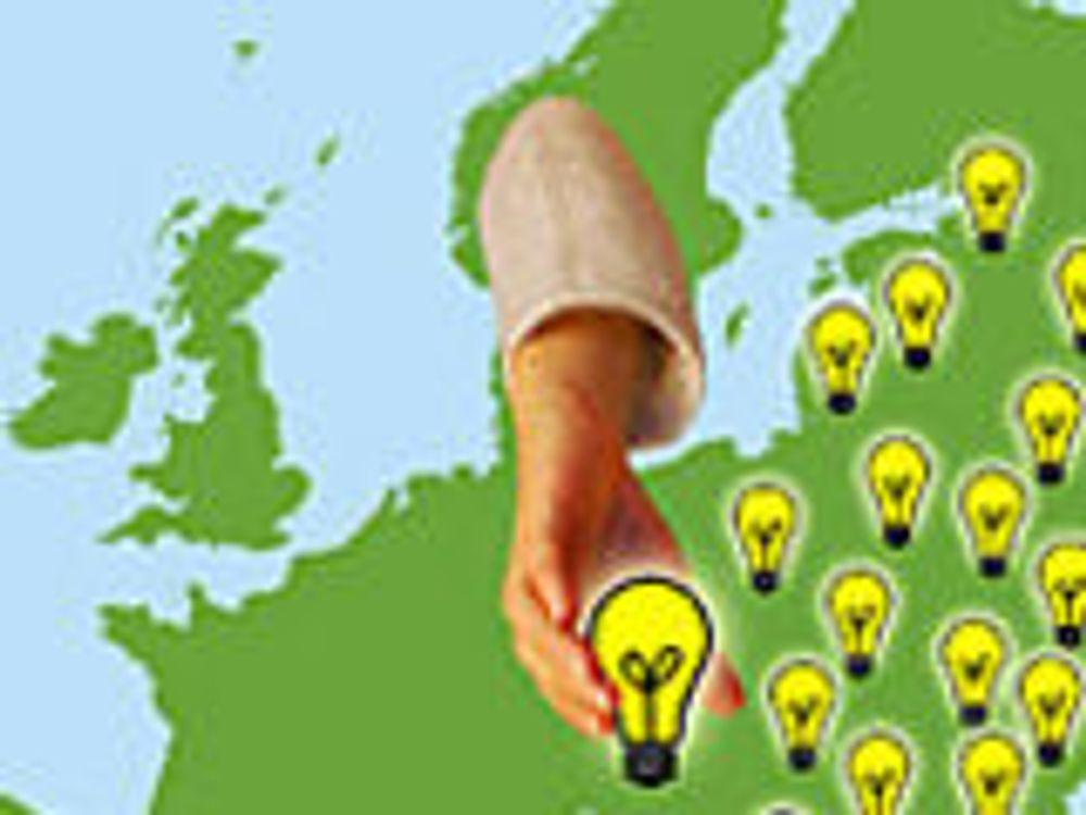 Send polske IT-studenter på norsk-kurs