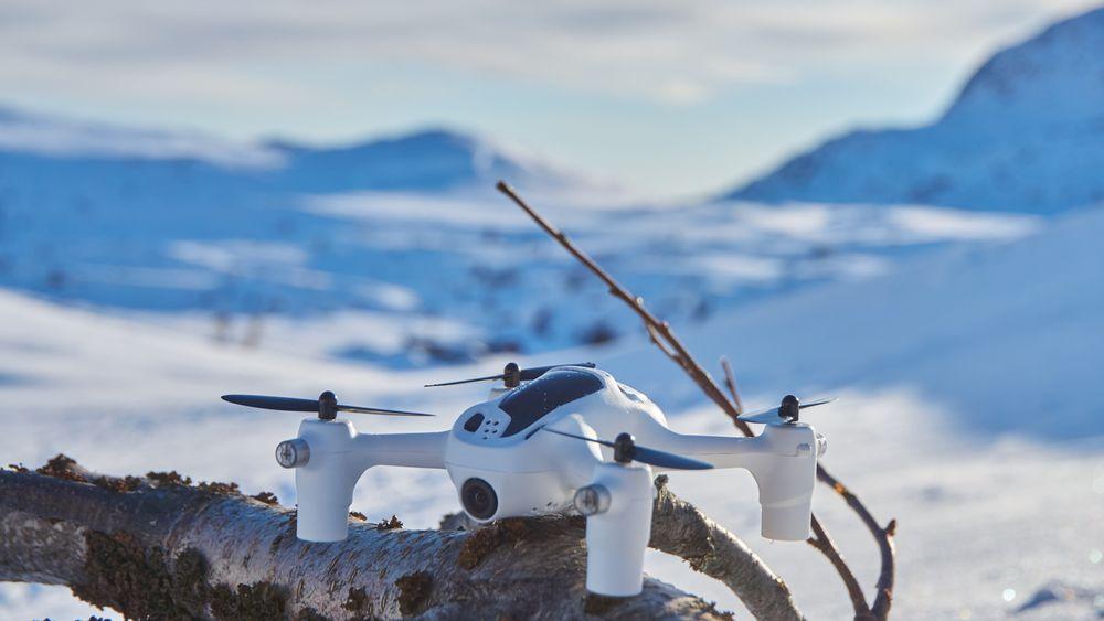 Dronener en liten og lekker sak.