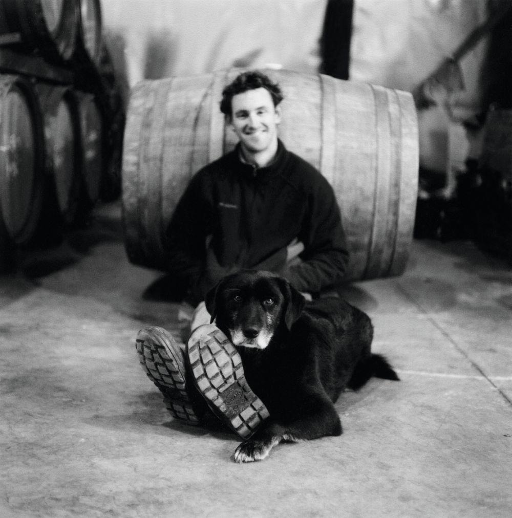 Luke Lambert i vinkjelleren.