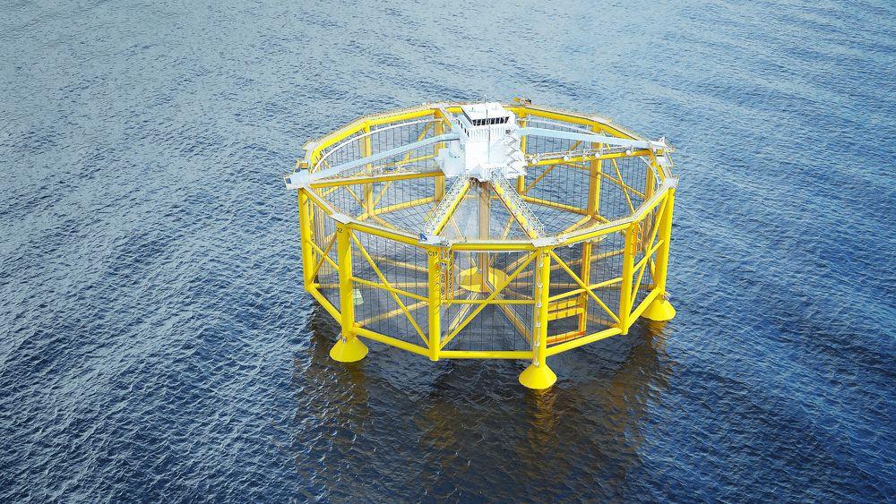 Ocean Farmings havmerd er utviklet på basis av mange års erfaring fra offshorenæringen. - Den største utfordringen er vektkontrollen, sier prosjektleder Bernt Ege.