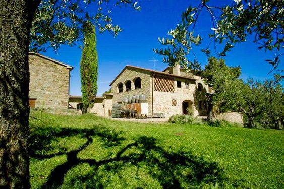 Vingården ligger i den idylliske delen av Chianti Classico som heter Panzano.
