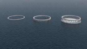 Oppdrettsanleggene kan stå lang ute til havs eller i fjorder med røffe forhold. Flere merder vil til sammen utgjøre et anlegg. Merdene kan ved å deballasteres heves i korte perioder for vedlikehold. Ved at fisken befinner seg i merden som har toppen på 10 meters dyp, skal den være mindre utsatt for lakselus.