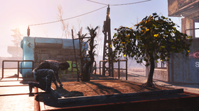 I Wasteland Workshop kan du trene opp gartnerferdighetene dine.