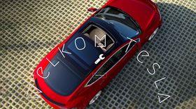 Initiativet «Welkom Tesla» forsøker å lokke Tesla til å ta over Fords gamle fabrikk i Genk i Belgia.
