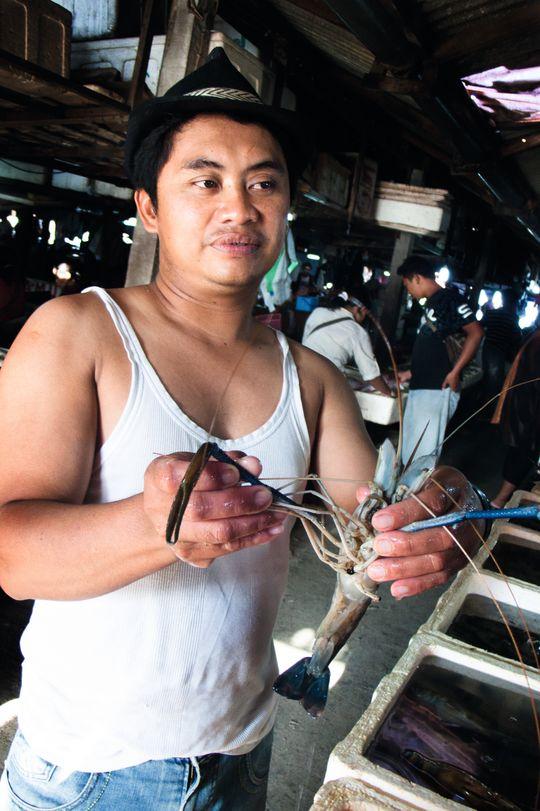 Her har fiskeren fått en skikkelig godbit: Macrobrachium rosenbergii - en stor ferskvannsreke.