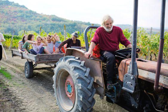 En traktor slipper selv ikke Valli Unite unna.