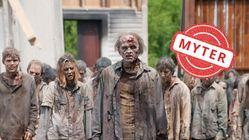 Hvor troverdige er egentlig zombie-mytene?