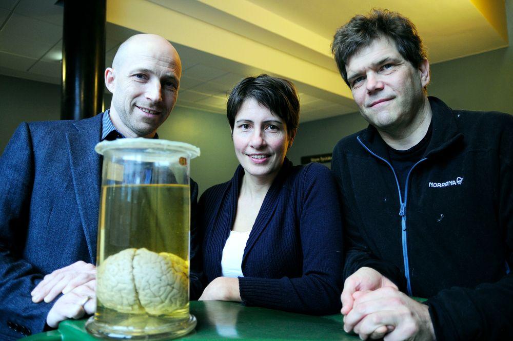 Anders Malthe-Sørenssen, Marianne Fyhn og Gaute Einevoll leder COBRA-prosjektet og var nøkkelpersoner ved etableringen av det tverrfaglige toppforskningsmiljøet CINPLA ved UiO.