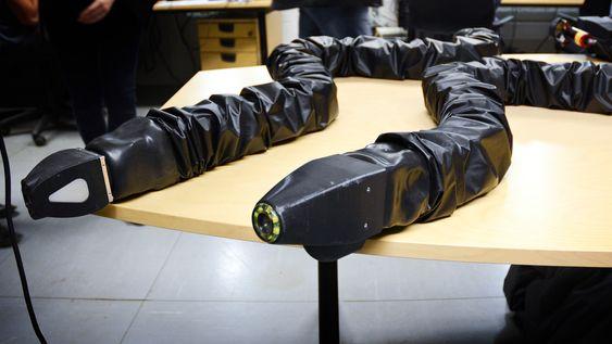 Disse to har Eelume brukt til å teste ut slangebevegelser i vann, for å lære seg hvordan robotene best skal kunne bevege seg.
