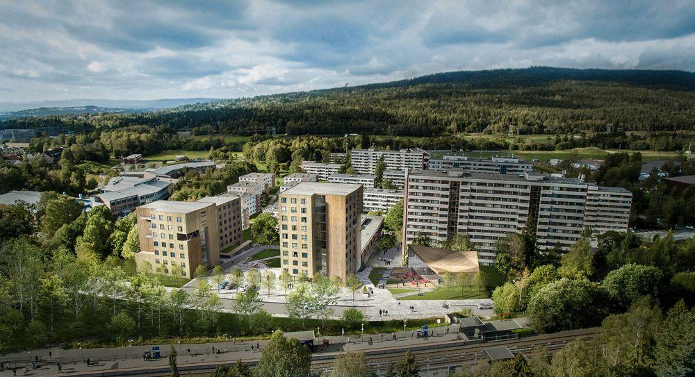 Når de nye studentboligene på Kringsjå i Oslo er realisert vil de bli Oslos høyeste massivtrebygg, med ti etasjer, der ni av etasjene er i massivtre.