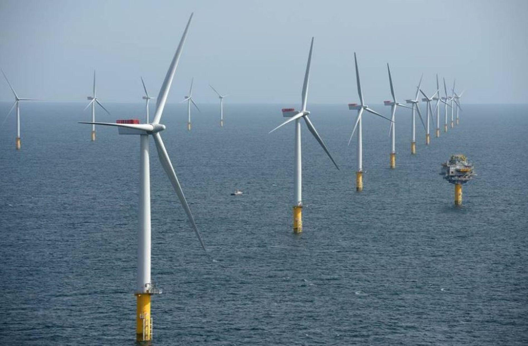 Statkraft slipper utbytte, men vil ikke reverserer vedtaket om å ikke satse på havvind.