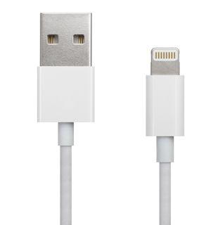 Apple Lightning-plugg er kompatibel med iPhone og iPad, og det er det hele. I neste generasjon iOS-produkter kan pluggen til høyre være den eneste utgangen vi får.
