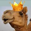 Kamelprinsen