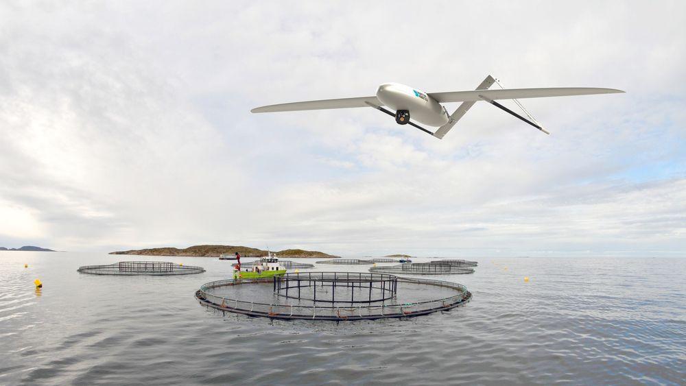 Sensodrone-prosjektet til Maritime Robotics skal sende detaljerte data til land, og kan bidra til å bruke landbaserte kontrollrom i oppdrett.  Illustrasjon: Eirik Svendsen