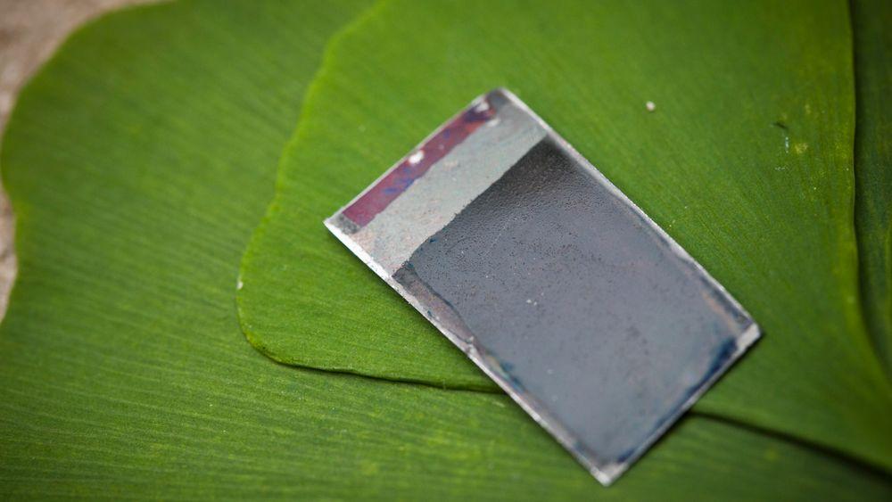 De har laget bakterier som lager bioetanol av CO2 fra atmosfæren