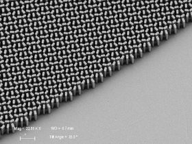 Dette bildet fra et elektronmikroskop viser linsen på nært hold.