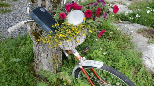 Selv en gammel, avdanket sykkel kan være tilholdssted for god lyd.