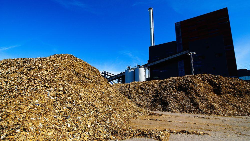 Det kan bli få mellomstore biobrenselanlegg om Norge innfører nytt EU-direktiv, advarer bransjeforeningene.